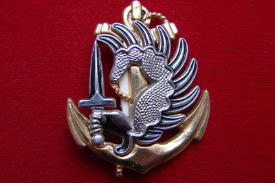 Знак отличия Французкий легион